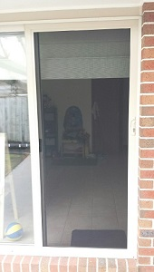 Aluminium door with mesh